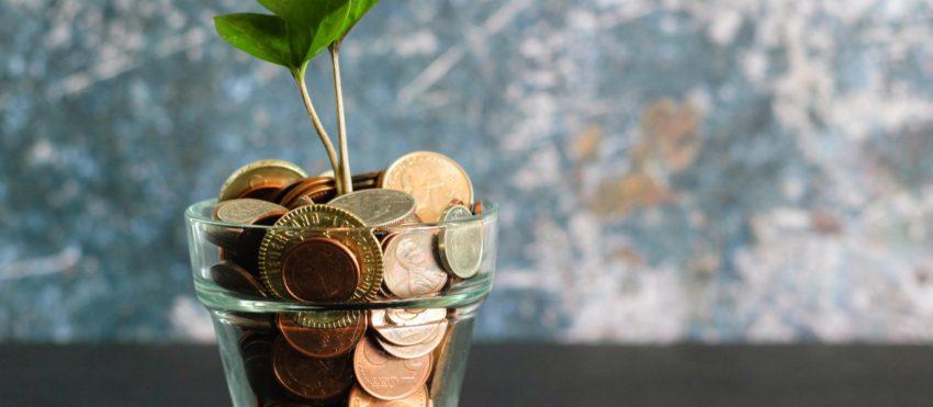 Money Savings Growth